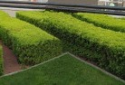 Areyonga Commercial landscaping 1