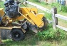 Areyonga Stump grinding services 3